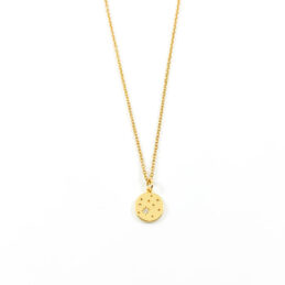 Shiny stars ketting goud stainless steel
