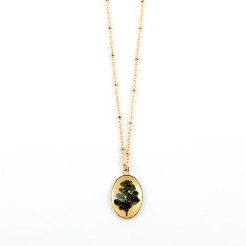 Ketting met droogbloemen goud stainless steel - 1.4