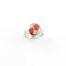 Ring met droogbloemen zilver stainless steel - 1.2