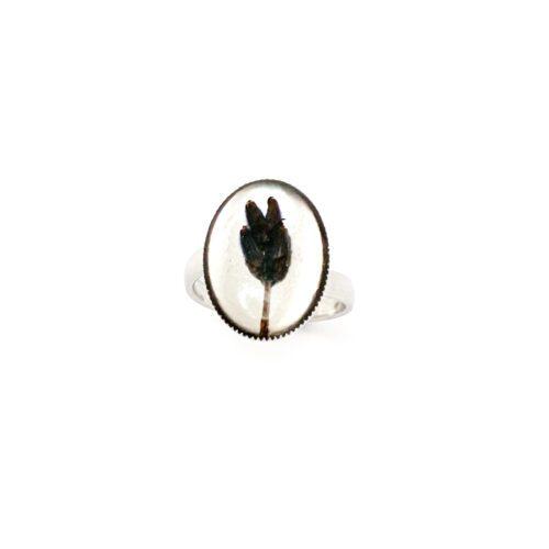 Ring met droogbloemen zilver stainless steel - 4.6